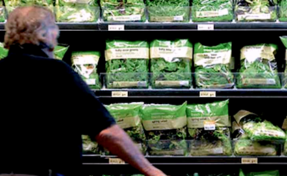 Le insalate di quarta gamma sono molto apprezzate dai consumatori e sono tra i prodotti che registrano la maggiore crescita di vendita
