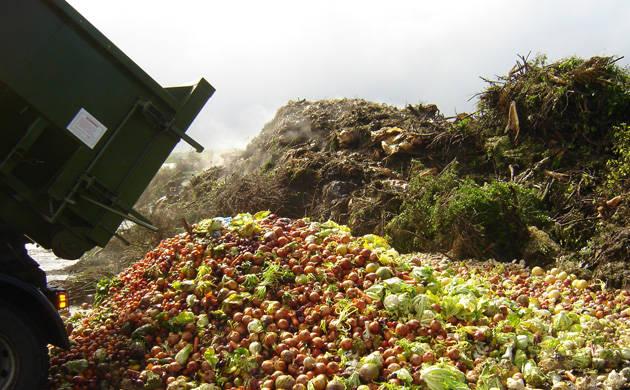 Il valore annuo dello spreco alimentare in Italia è di 16 miliardi di euro, secondo una rilevazione di Coldiretti-Ixè