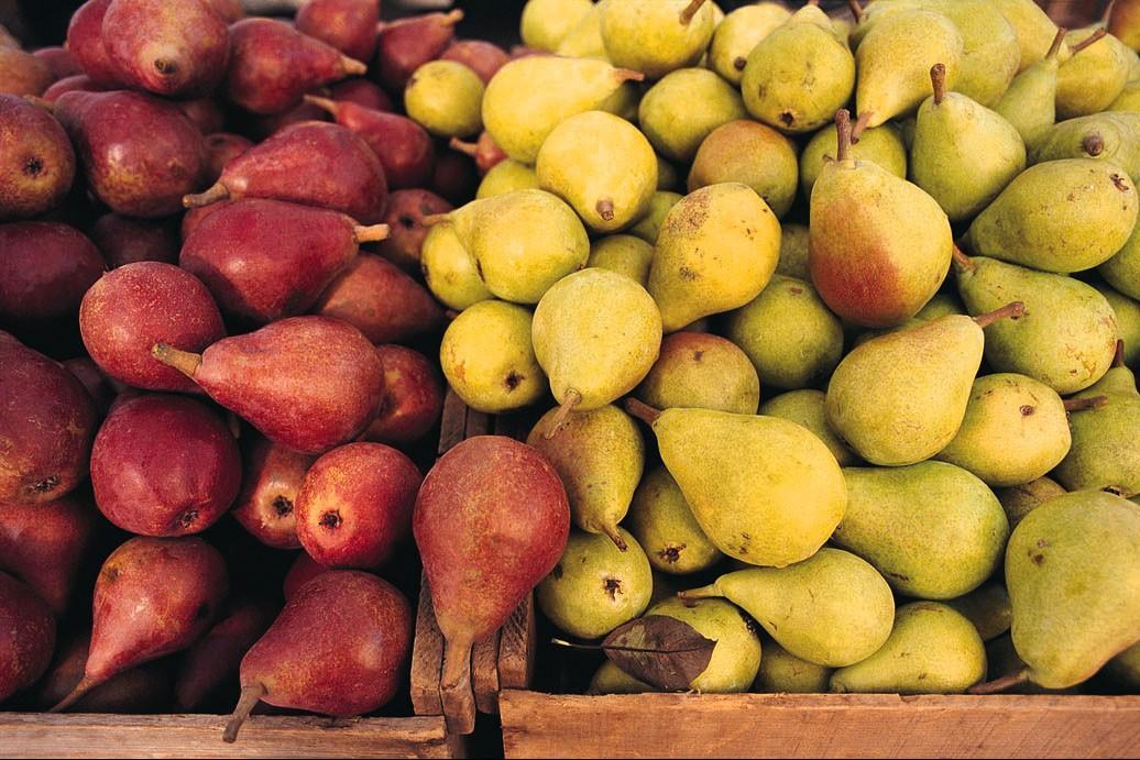 Tra i prodotti di stagione, sono stabili le quotazioni di pere e mele, come delle castagne