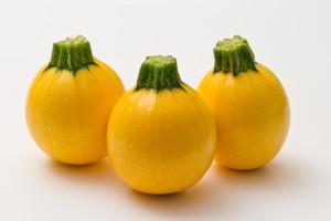 Gautier Sementi, zucchino Luneor R95