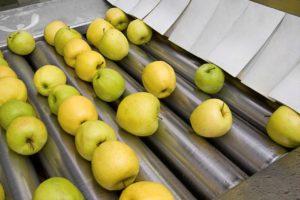 Natura Nuova lavorazione mele