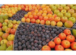 Natura Nuova frutta biologica
