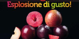 Le 4 varietà per le susine Metis di Granfrutta Zani
