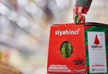 Il pack per l'anguria Watermelon Dream di Mondi Corrugated Packaging