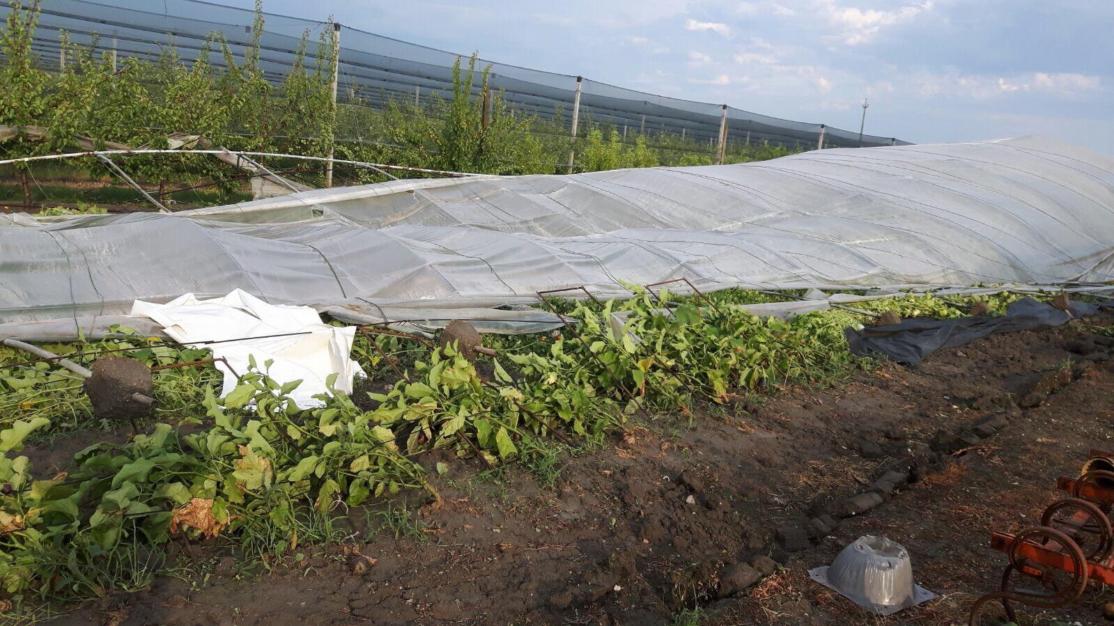 Risultati immagini per tromba d'aria agricoltura