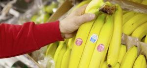 Le banane a marchio Rewe vendute senza imballo in plastica