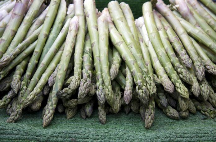 E' prossima a entrare nel vivo nel vivo la stagione degli asparagi, che si mantengono per ora su prezzi stabili