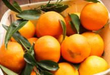 Prezzi in leggero aumento anche per le clementine, prodotto giunto ormai a fine campagna