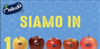 Le mele Melinda della Val di Non e Val di Sole, con il bollino blu, che trasmette qualità da 25 anni