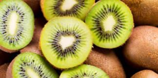 L'Italia è prima in Europa per produzione di kiwi e tra i primi Paesi al mondo