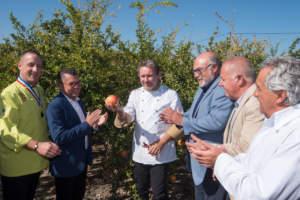 Il taglio della prima melagrana Mollar de Elche inaugura la campagna di raccolta