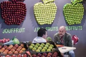 Le mele sono tra i principali prodotti richiesti da Singapore e India