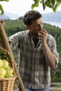 spot melinda di mela in mela