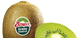 Il kiwi Zespi Green, alimento ideale per depurarsi