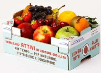 Attivo Bestack, è un packaging funzionale che allunga la shelf-lile dei prodotti ortofrutticoli