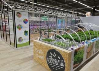 Il banco aeroponico all'interno di Auchan, a Torino, realizzato da Agricooltur