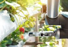 Le soluzioni innovative proposte dalle start up attingono dalle circa 300 tecnologie dell'agricoltura 4.0