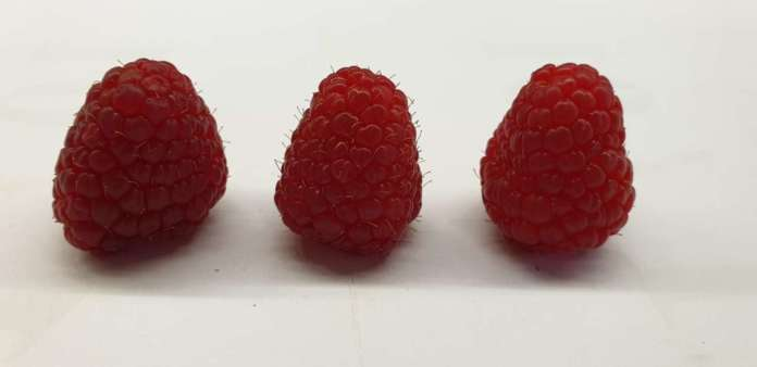 Lamponi, mirtilli, more: BerryWay punta a una fornitura di frutti di bosco per l'Italia per 52 settimane l'anno