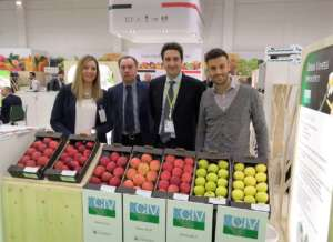 Lo stand di Civ a Fruit Logistica, a Berlino