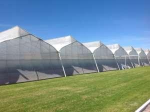 Biorete Air Plus: in monofilo di polietilene, difende le colture dagli insetti