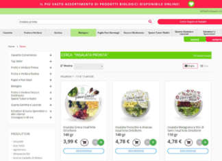 Con oltre 1.300 varietà di frutta e verdura fresca dall'Italia e dal mondo e 40mila clienti, da start up Fruttaweb è entrata nella classifica dei 200 migliori e-commerce italiani