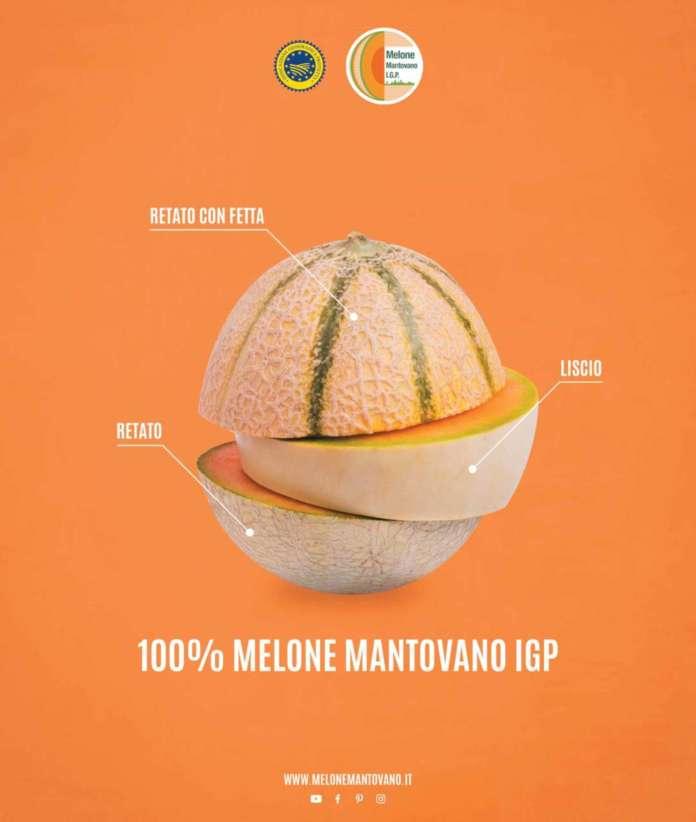 Sono tre le tipologie di Melone Mantovano ammesse nel disciplinare della Igp, melone retato con fetta, il melone retato senza fetta e melone liscio