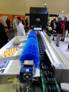 Il nuovo software di Sorma Group garantisce un'estrema precisione nella selezione automatizzata della frutta