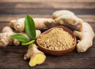 Continua inarrestabile il boom dello zenzero apprezzato per sapore e come prodotto healthy
