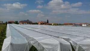 La rete Protecta è stata testata con prove severissime contro la pioggia
