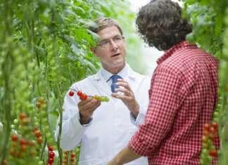 La sostenibilità ambientale è al centro delle attenzioni di Corteva Agriscience, il cui business si sviluppa su tre ambiti: sementi, protezione delle colture e agricoltura digitale