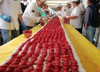 Con 60,48 metri la torta di fragole del Metapontino, varietà Sabrosa, ha vinto il record del mondo battendo il primato detenuto dalla Francia