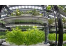 Le serre idroponiche in vertical farming progettate da Infarm, start-up con sede a Berlino