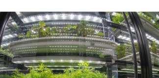 Le serre idroponiche in vertical farming progettate da Infarm, start-up con sede a Berlino