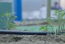 Le migliori soluzioni per il risparmio idrico in agricoltura saranno illustrate nello spazio AcquaCampus di Macfrut 2019