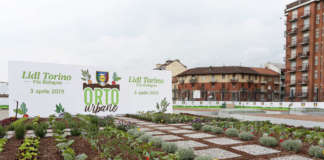 Lidl_Torino Via Bologna