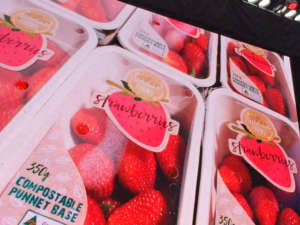 Il packaging sostenibile è uno dei temi più importanti emersi al Global Berry