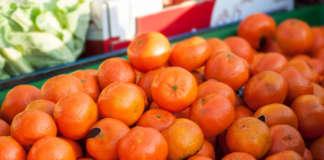 In rialzo le quotazioni delle Clementine