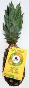 L'ananas Dolcetto bio, della varietà Pan di Zucchero ha gusto dolce