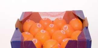 Dal 2005, Rosaria è uno dei più apprezzati brand dell'arancia rossa di Sicilia. I prodotti sono commercializzati anche in Cina, tramite la piattaforma Alibaba