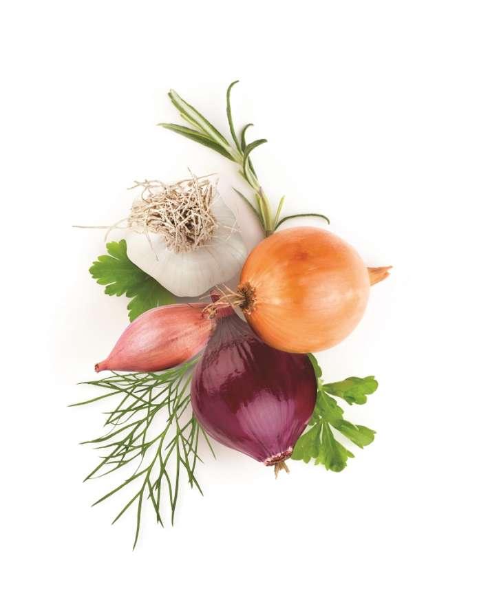 CO.P.A.P. produce aglio bianco piacentino, cipolla e scalogno dal 1976
