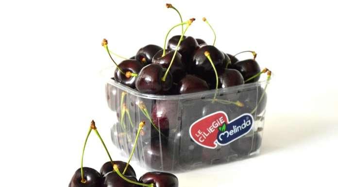 Kordia e Regina sono le principali varietà di ciliegie prodotte dal Consorzio Melinda: il pack riporta l'iconico bollino blu