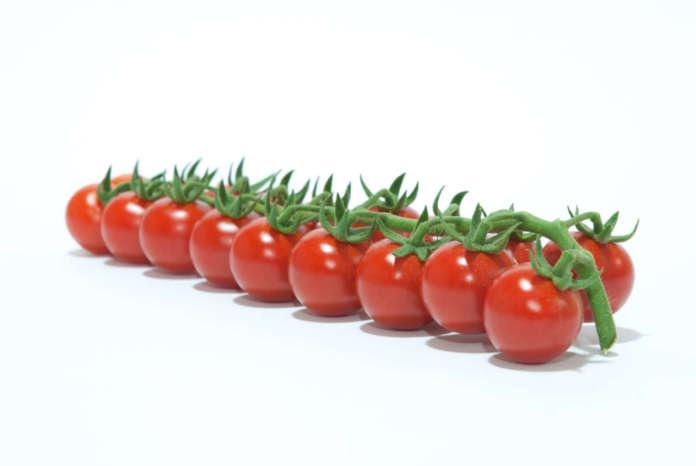 top seeds varietà