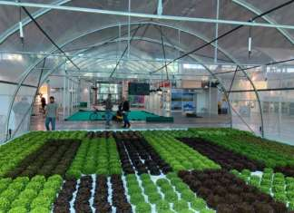 Il Greenhouse Technology Village, un villaggio dell'innovazione orticola in serra, che ospita i principali produttori di tecnologie