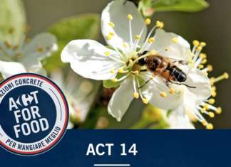 Carrefour Italia ha lanciata dal 2018 le Filiera Qualità che tutelano le api: dopo gli agrumi toccherà alle pere e ai pomodori