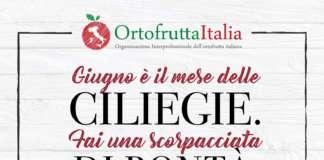 Per la prima volta le ciliegie entrano nel progetto annuale di promozione e comunicazione istituzionale di Ortofrutta Italia e del Mipaaft