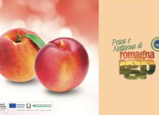 Il territorio della Romagna sarà uno dei punti di forza su cui verterà la campagna di comunicazione delle Pesche e Nettarine di Romagna Igp. La promozione è realizzata da Cso Italy