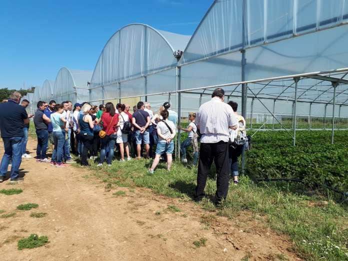 Un momento della visita presso le aziende bio socie di Aprofruit