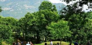 In Italia ci sono 18 mila aziende con castagneto da frutto per una superficie di 43 mila ettari e una produzione annua di oltre 50 mila tonnellate