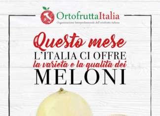 """I manifesti posti nei punti vendita della gdo, negozi specializzati e di """"prossimità"""", illustrano le principali tipologie di melone italiano presenti sul mercato"""
