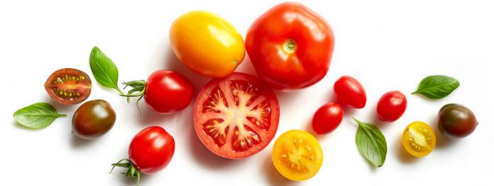 Orticoltura Gandini Antonio produce circa 6 milioni di confezioni all'anno di pomodori, sia a marchio proprio sia per la private label